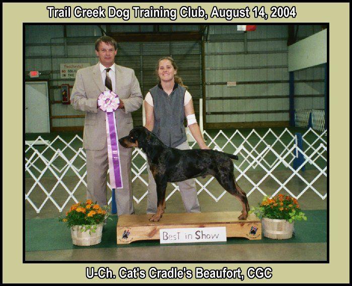 Custom Dog Training Equipment