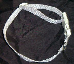 Dog Collar Webbing
